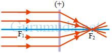lensa cembung - 3